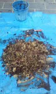 Mix the coconut fibre, sand and dog poo coated with EM bokashi powder together on a tarp
