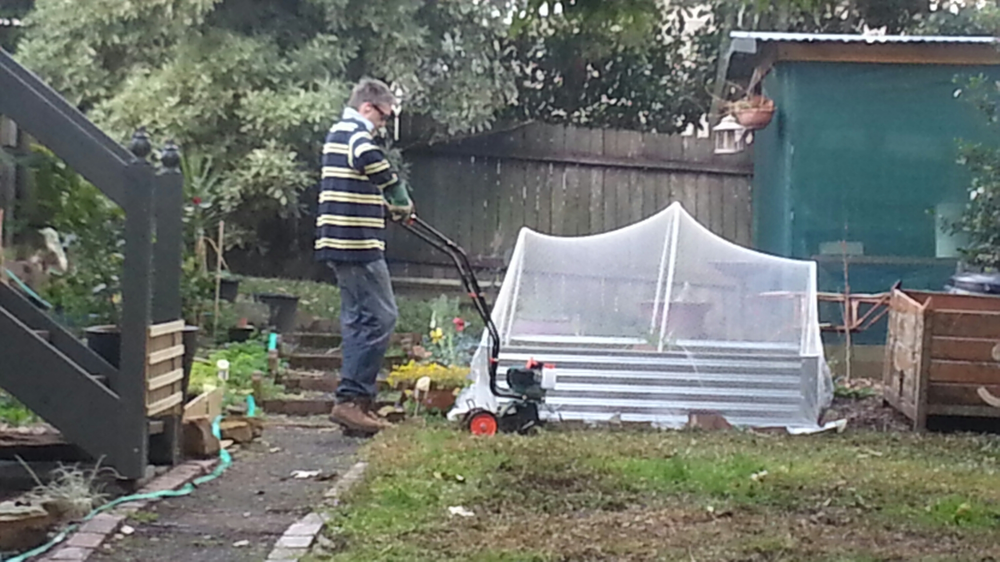 levelling the land ready for wicking garden beds greener me